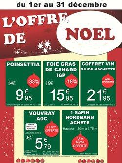Promos de Jardineries et Animaleries dans le prospectus de Gamm vert à Paris ( Il y a 2 jours )