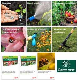 Gamm vert coupon ( Expire ce jour)