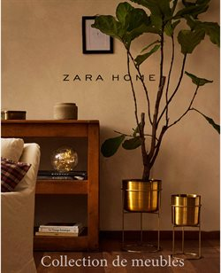 Zara Home coupon ( Expiré )