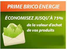 Promos de Brico Cash dans le prospectus à Niort
