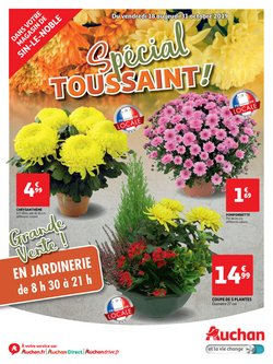 TRACT SPECIAL CHRYSANTHEMES