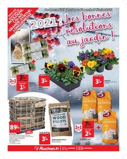 Promos de Hyper-Supermarchés dans le prospectus de Auchan Direct à Brest ( Publié hier )