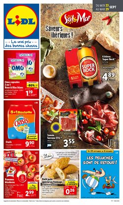 Lidl coupon ( Expire demain )