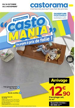 Castorama coupon ( Expiré )