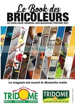 Promos de Bricolage dans le prospectus à Tridôme ( Plus d'un mois)