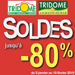 Promos de Tridôme dans le prospectus à Perpignan