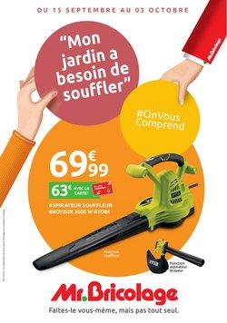 Mr Bricolage coupon ( Nouveau)