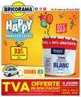 Bricorama coupon à Lyon ( Expiré )
