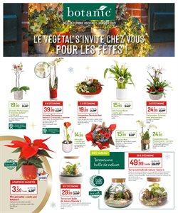 Botanic coupon à Toulouse ( Expiré )