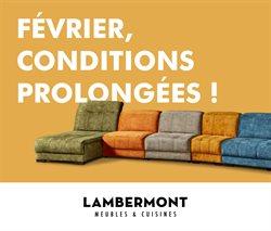 Meubles Lambermont coupon ( Plus d'un mois )