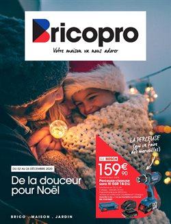 Brico Pro coupon ( Expiré )