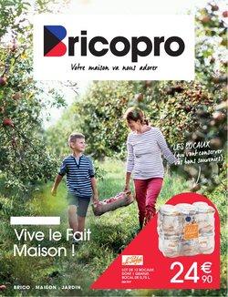 Brico Pro coupon ( 2 jours de plus)