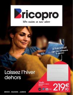 Brico Pro coupon ( Plus d'un mois)