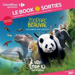 Promos de Culture et Loisirs dans le prospectus à Carrefour Spectacles ( Plus d'un mois)