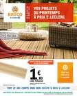 E.Leclerc Brico coupon à Lyon ( Expiré )
