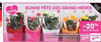 Rosier fête des grand-méres offre à 4.79€