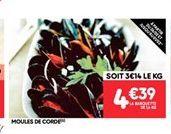Moules de corde offre à 4.39€
