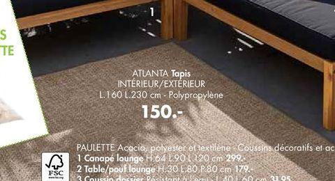 Tapis offre à 150€