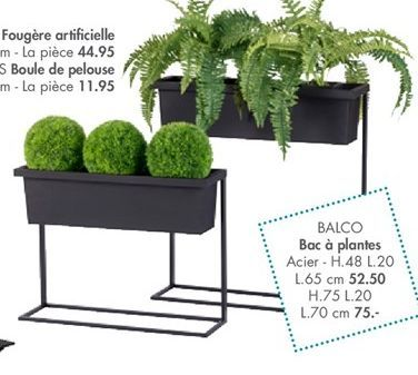 Fougère offre à 44,95€