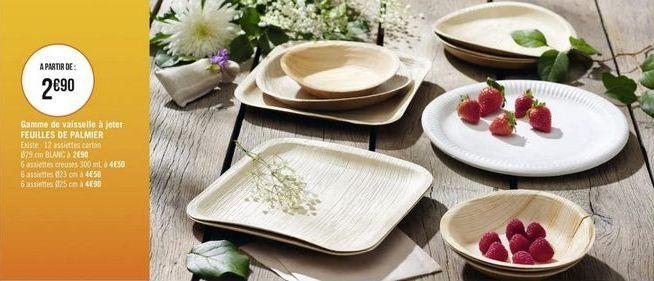 Gamme de vaisselle à jeter feuilles de palmier offre à