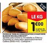Pommes de terre de consommation a chair ferme blanc nouvelle recolte offre à