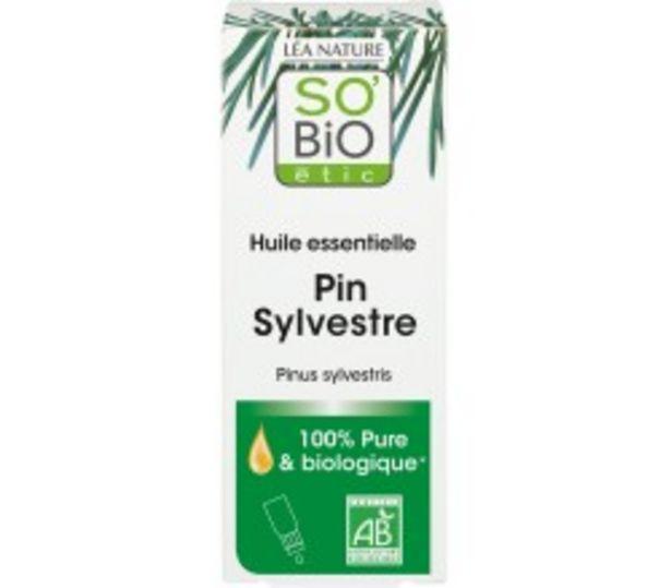 Huile essentielle Pin Sylvestre Bio offre à 6,3€