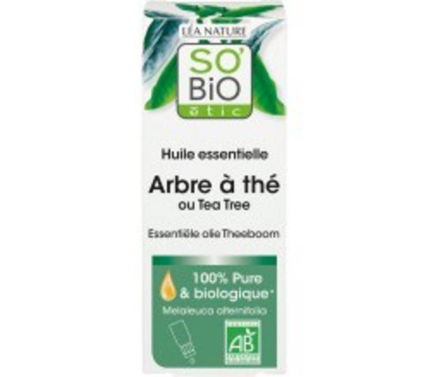 Huile essentielle Arbre à thé Bio offre à 6,3€