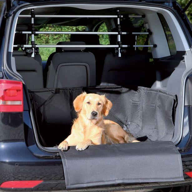 Protection de coffre de voiture Trixie pour chien - L164xl125cm offre à 27,99€