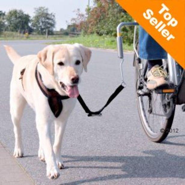 Kit pour vélo Trixie Biker-Set de Luxe - Kit de séparation offre à 24,99€