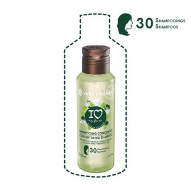 Shampooing concentré Tous types de cheveux - 100ml offre à 1,35€