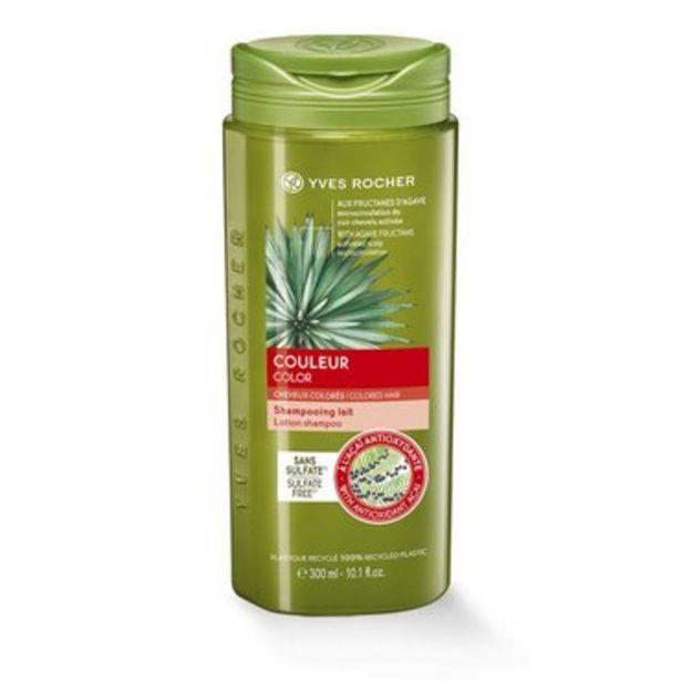 Couleur - Shampooing Lait Sans Sulfate offre à 3,45€
