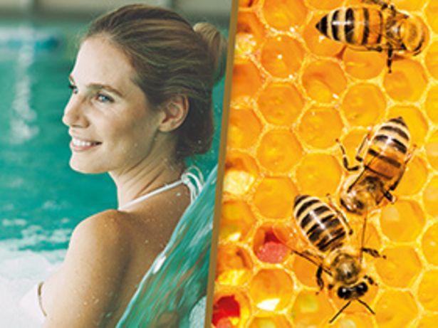 Pause spa et parrainage de ruche offre à 223,84€