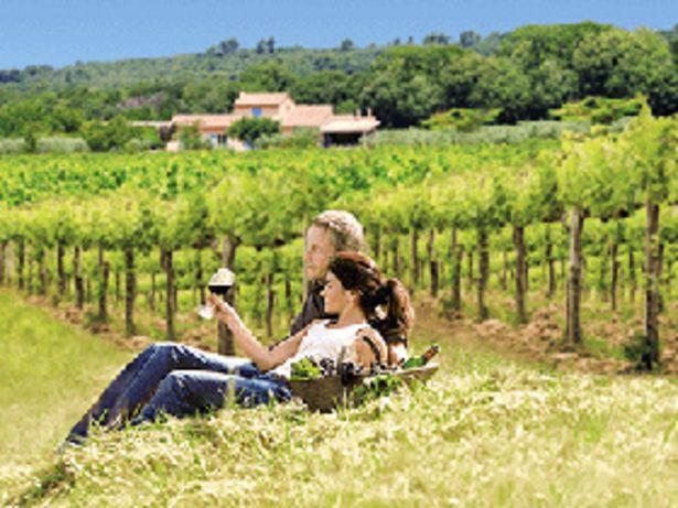 Sur la route des vins offre à 131,67€