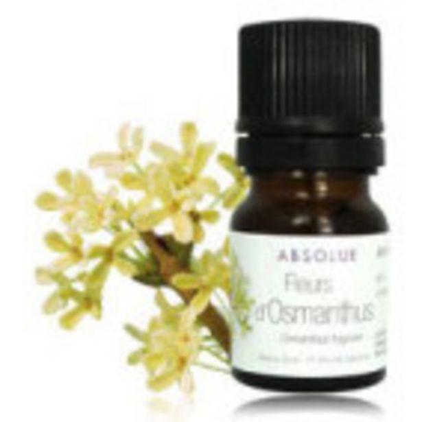 Fleurs d'Osmanthus offre à 7,9€