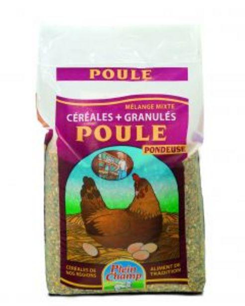Plein Champ - Mélange de céréales pour pondeuse 20 kg offre à 16,95€
