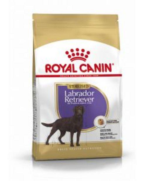 Croquettes Royal Canin Labrador Sterilised 12 kg offre à 63,95€