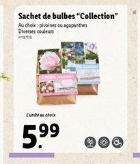 """Sachet de bulbes """"Collection"""" offre à 5,99€"""