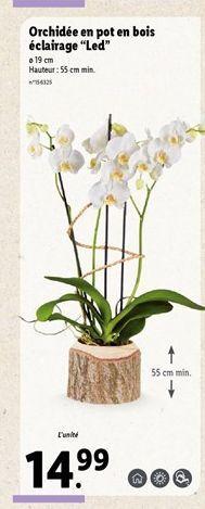 """Orchidée en pot en bois éclairage """"Led"""" offre à 14,99€"""