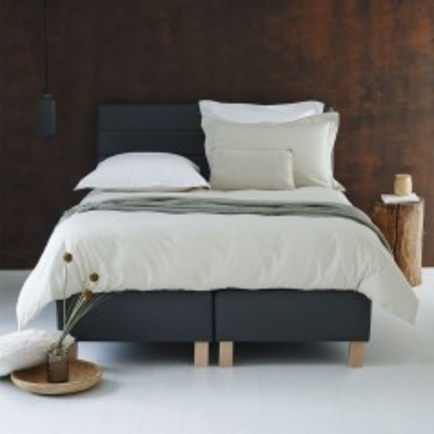 Boxspring Coventry Cabernet Anthracite - Duo 160x200 offre à 530€