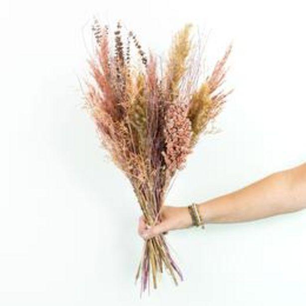 Bouquet de fleurs séchées Saumon offre à 22,99€