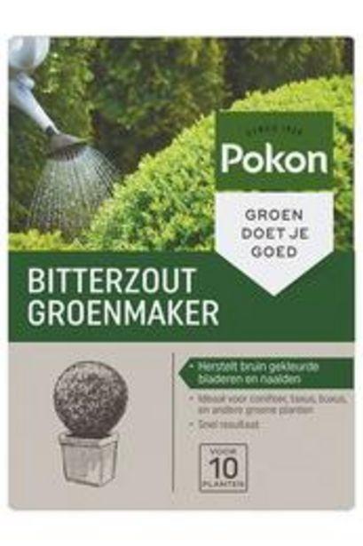 Sel d'Epsom, coloration verte 500g - Pokon offre à 9,99€