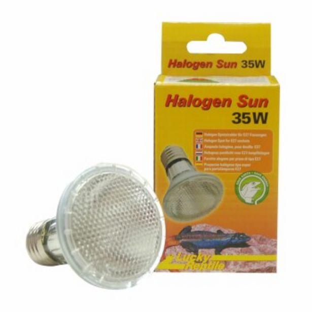 Halogen Sun 35watts offre à 12,66€