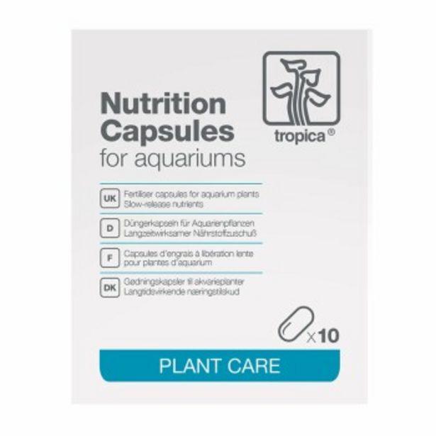 Capsules d'engrais pour plantes offre à 5,83€