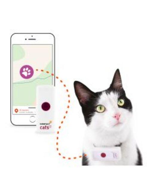 Collier GPS pour chat offre à 49,9€