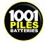 1001 piles